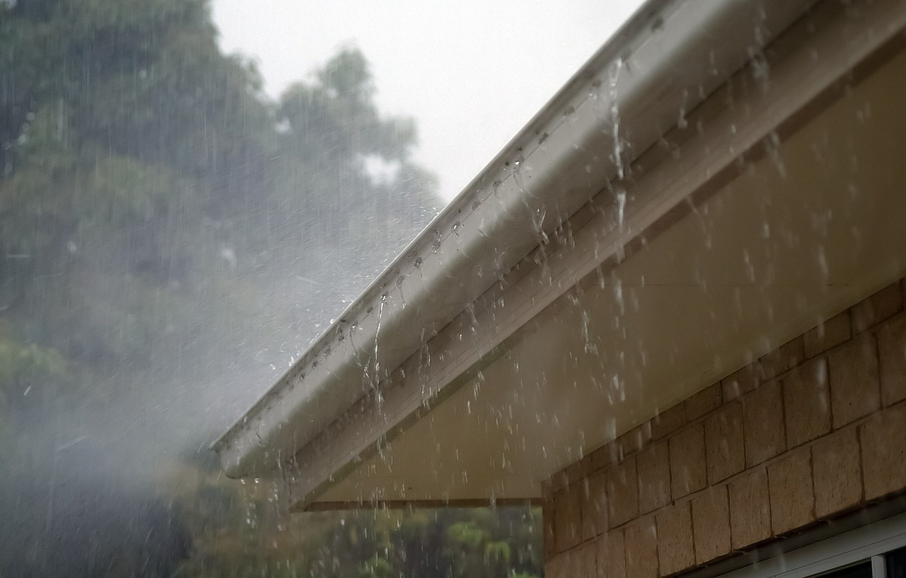 Niederschlag Regen Regentropfen Regenrinne